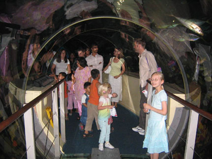 Inside the underwater tunnel