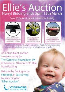 Ellie's Auction Poster